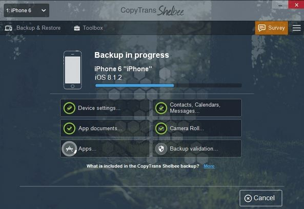 CopyTrans iPhone Backup Software<