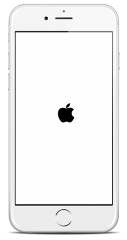 iphone se sigue reiniciando-logo blanco de apple en iphone