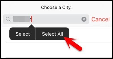 select input text