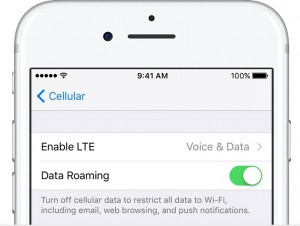 enable data roaming