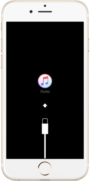 connect iphone to itunes