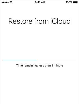 select icloud backup