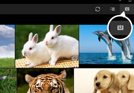 import photos