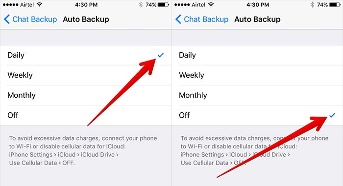 ios 12 whatsapp problems and solutions-Turn off the Auto backup option