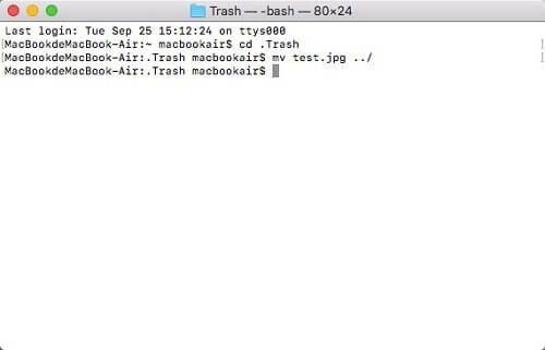 recover files from trash on mac - use terminal