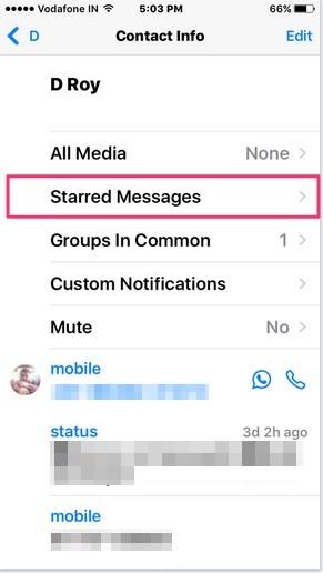 البحث عن دردشات WhatsApp 7