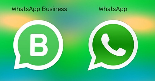 whatsapp business act trasfer