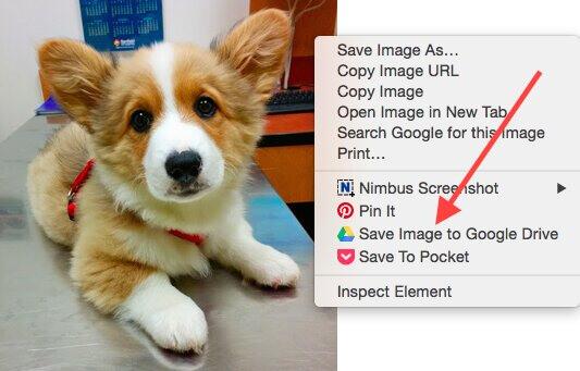 "select ""Save Image to Google Drive"""