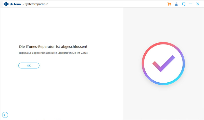 Das iOS-Gerät aus dem Wiederherstellungsmodus herausholen