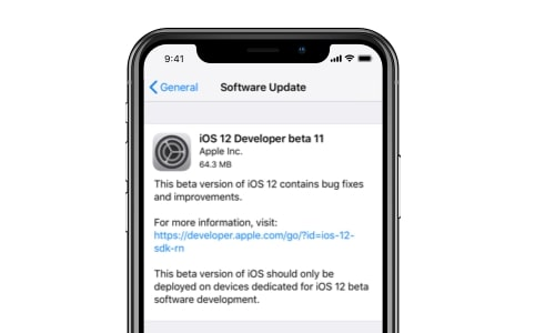 ios 12 problem - update not appear