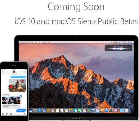 controllare le regole le condizioni della beta della apple