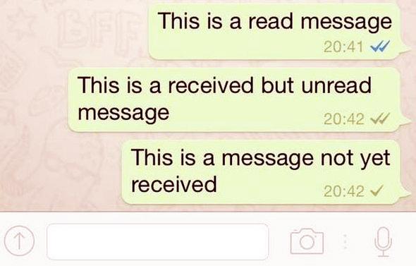 Cosa Significano i Segnetti WhatsApp? Come Distinguere i Diversi Segnetti?