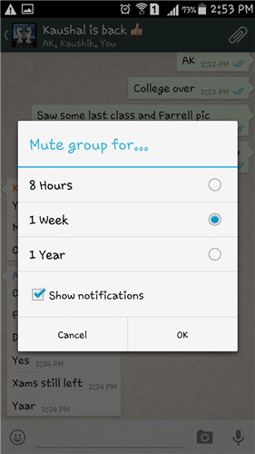 silenciar notificacoes em grupos do whatsapp