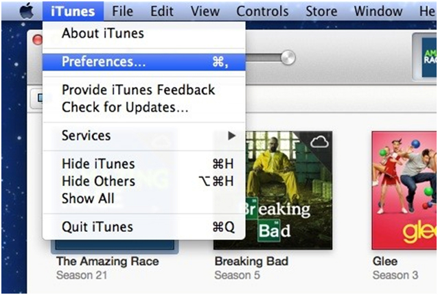 Was sichert iTunes?