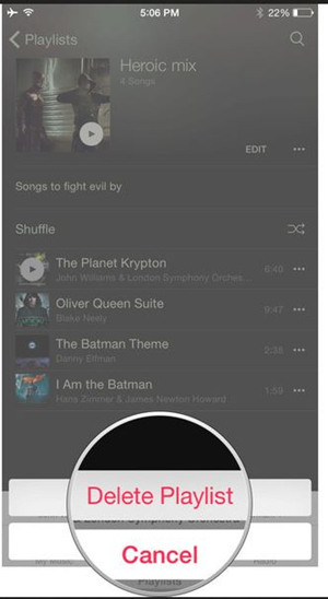 Delete Playlist from iPhone - Confirm Deletion