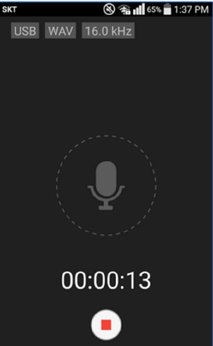 USB audio recorder for phone calls