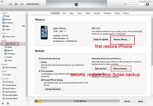 reset iphone lost password