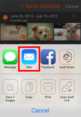 transfer photos from iPad to PC by using Email - Share Photos