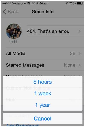 silenciar um grupo do whatsapp