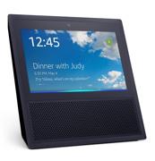 best smart home gadget-voice control